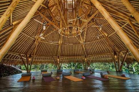 Bali seven